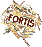 Word cloud for Fortis