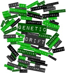 Word cloud for Genetic drift