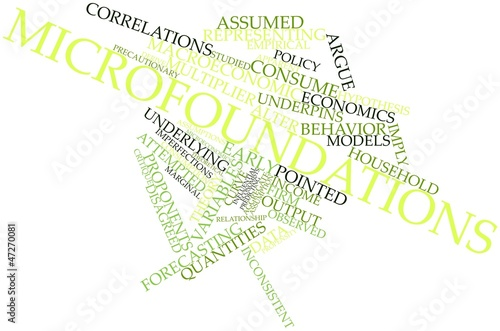 Word cloud for Microfoundations