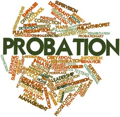Word cloud for Probation