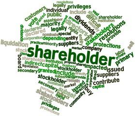 Word cloud for Shareholder