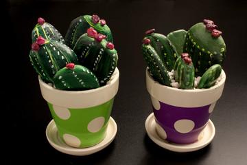 Cactus decorativi