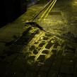 wet path