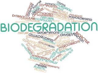 Word cloud for Biodegradation