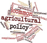 Word cloud for Common Agricultural Policy