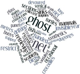 Word cloud for Ghost net