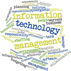 Word cloud for Information technology management