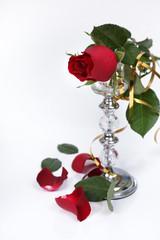 Róża świecznik