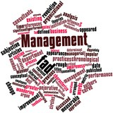 Word cloud for Management fad