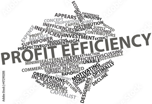 Word cloud for Profit efficiency