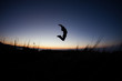 silhouette of man jumping after sunset on mountain