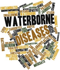 Word cloud for Waterborne diseases