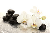 Fototapety Spa stones and orchid flowers, isolated on white.