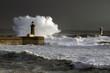 Porto Waves