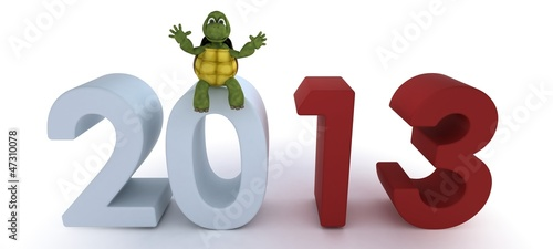 tortoise bringing in the new year