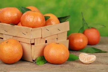 Mandarinen-Ernte