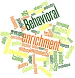 Word cloud for Behavioral enrichment