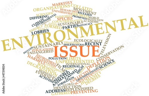 Word cloud for Environmental issue