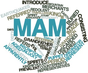 Word cloud for Mam