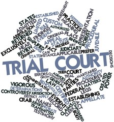 Word cloud for Trial court