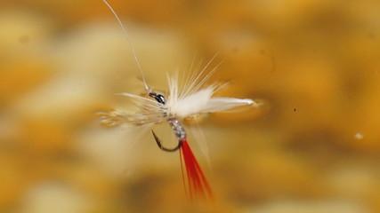 White Miller Flyfishing