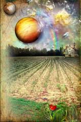 Field with rainbow and farmhouse