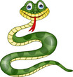Funny green snake carton