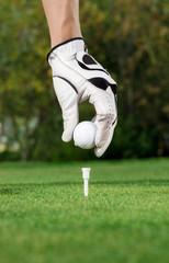 Golfer hand and ball