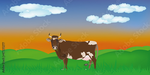 Dairy cow over summer green meadow.The rural landscape