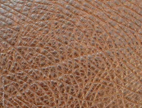 Leather texture closeup detailed background