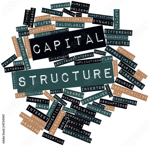 Word cloud for Capital structure