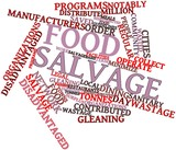 Word cloud for Food salvage