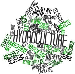 Word cloud for Hydroculture