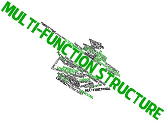 Word cloud for Multi-function structure