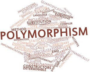 Word cloud for Polymorphism