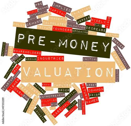 Word cloud for Pre-money valuation