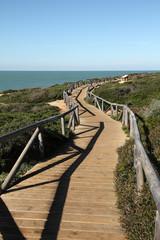 Sendero hacia las Calas de Roche, Conil, Cádiz