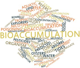 Word cloud for Bioaccumulation