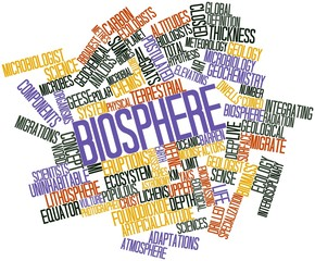 Word cloud for Biosphere