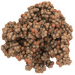 Prostate-specific antigen (PSA), chemical structure