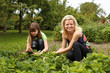 daughter and mother is working in the vegetables garden