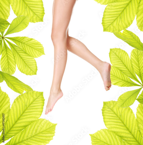 Woman legs with horse chestnut