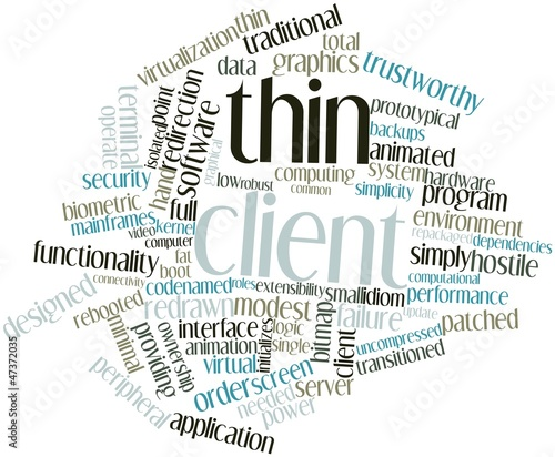 Word cloud for Thin client