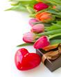 valentines day tulips
