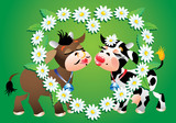 Cartoon kissing cows and camomile border