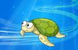under water tortoise