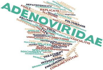 Word cloud for Adenoviridae