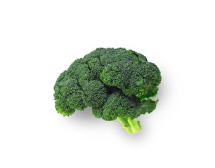 Broccoli shaped like brain isolated