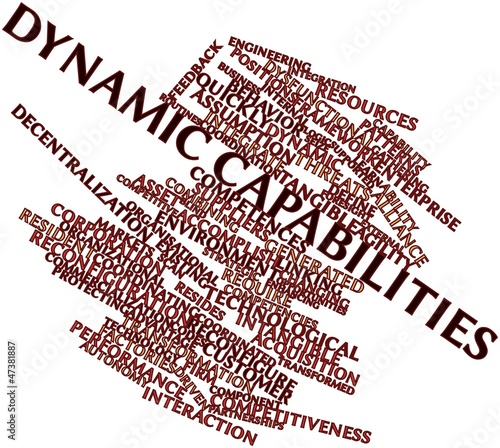 Word cloud for Dynamic capabilities