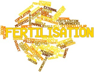 Word cloud for Fertilisation